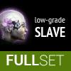 Full Set of Low-Grade SLAVE implants