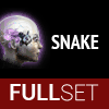 Full Set of Mid-Grade SNAKE implants