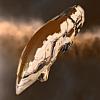 APOCALYPSE (Amarr Battleship)
