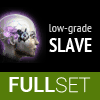 Full Set of Low-Grade SLAVE implants