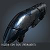 Paladin EoM SKIN (Permanent)