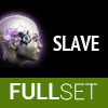 Full Set of Mid-Grade SLAVE implants