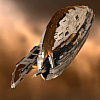 AEON (Amarr SuperCarrier)