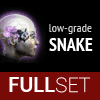 Full Set of Low-Grade SNAKE implants